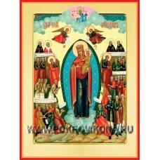 Всех скорбящих радосте икона Божией Матери