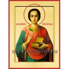 Великомученик и целитель Пантелеимон