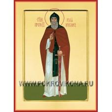 Святой преподобный Илья Муромец
