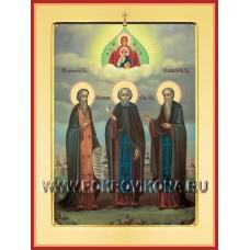 Преподобные Герман, Зосима и Савватий Соловецкие