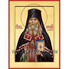 Святитель Феофан Затворник, Вышенский